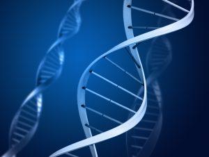 Studiu despre o posibila cauza genetica a schizofreniei